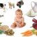 Какие продукты нужно выбирать для прикорма малыша?